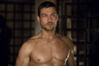 d/d4/d4d099fb_andy-whitfield-1-1.jpeg