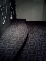 8/87/87f6abae_carpet1.jpeg