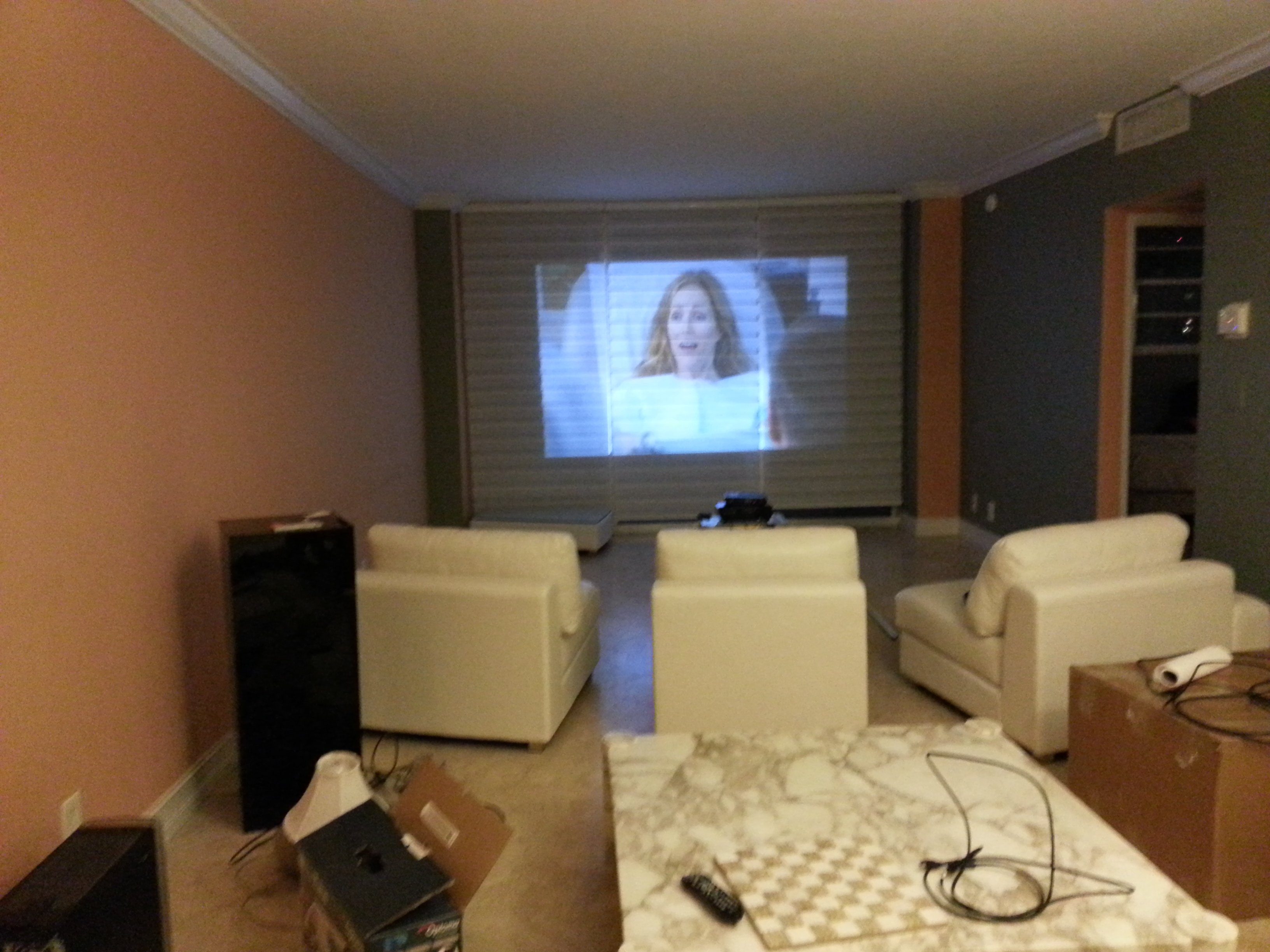 Projector In 1 Bedroom Apartment Living Room