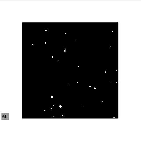 photo StarCeiling_Construct_02.jpg