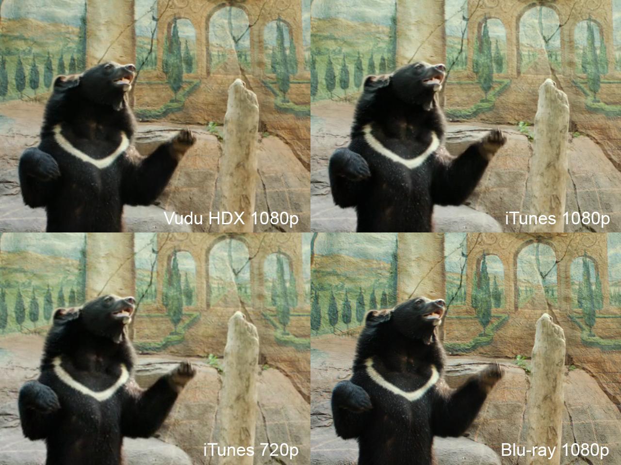 Life of Pi: iTunes vs  Vudu vs  Blu-ray (updated) - AVS